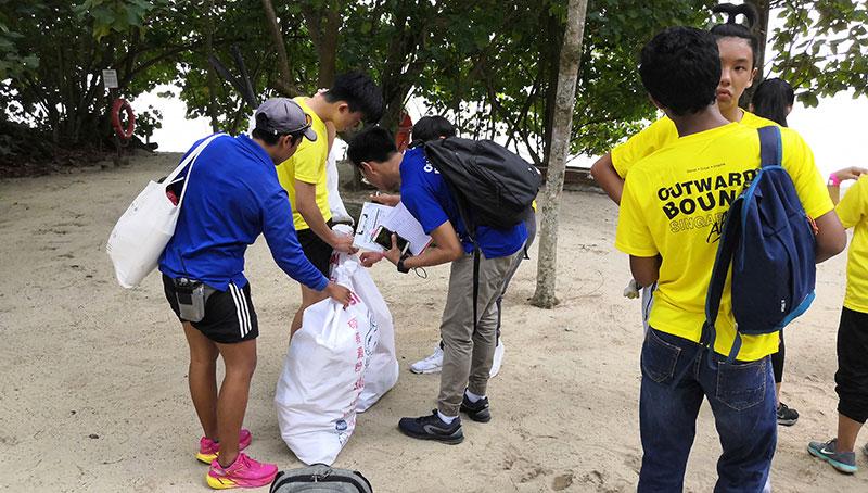 Trash collection near the beach